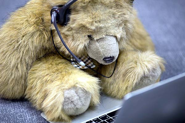 Photo of Louisville customer service bear