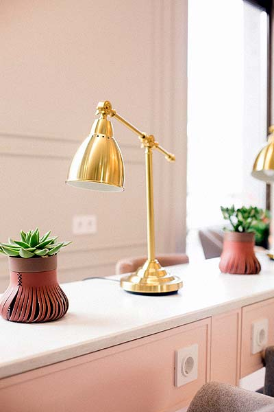 Photo of a shelf with plants and a lamp