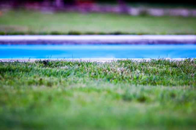 Photo of a backyard lawn and swimming pool